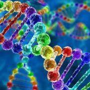 Δωρεάν  οι εξετάσεις ανάλυσης DNA για τους καρκινοπαθείς από 1η Μαρτίου 2019