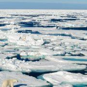 Απόλυτο ρεκόρ ζέστης 21 βαθμών Κελσίου καταγράφηκε την Κυριακή στον Βόρειο Πόλο