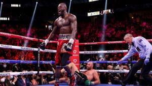 Wilder knocked Fury fown