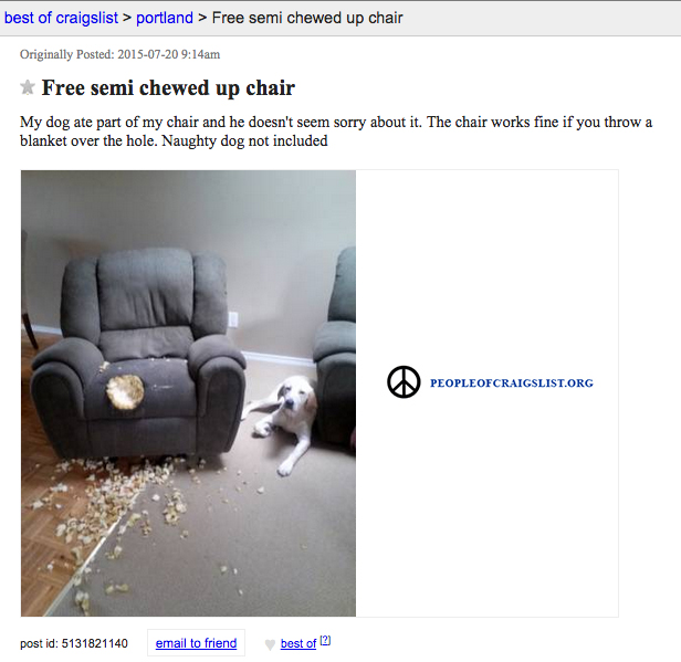 Craigslist dog chewed up chair