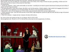 Craigslist Cat Circus