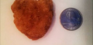 Chicken nugget shaped like ohio on craigslist