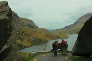 person in a horse drawn carriage passing through the Gap of Dunloe