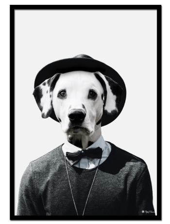 Nick the Dalmatian poster  Funny poster of a dog's head on human body.