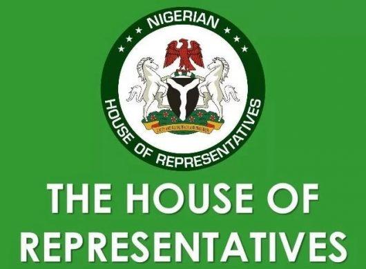 Coronavirus: Reps adjourn plenary as over 50 lawmakers test positive