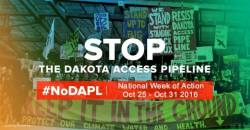 nodapl_oct2016