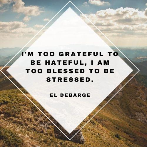 gratitude abundant quotes
