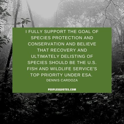 Support saving wildlife conservation quotes