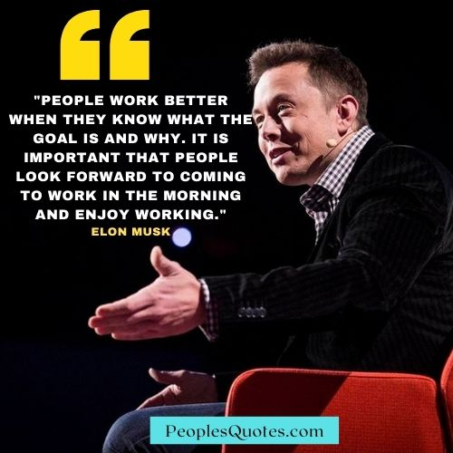 Motivational Elon Musk Quote on Life