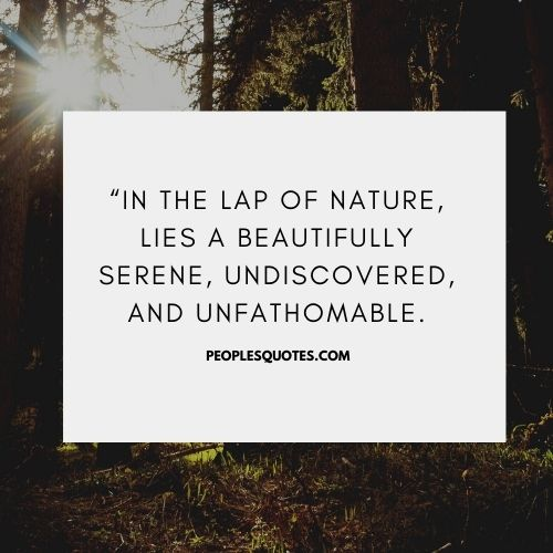 Best Quotes on Nature