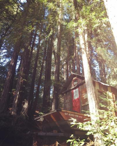 Secret History shantyboat nestled in the redwoods in California