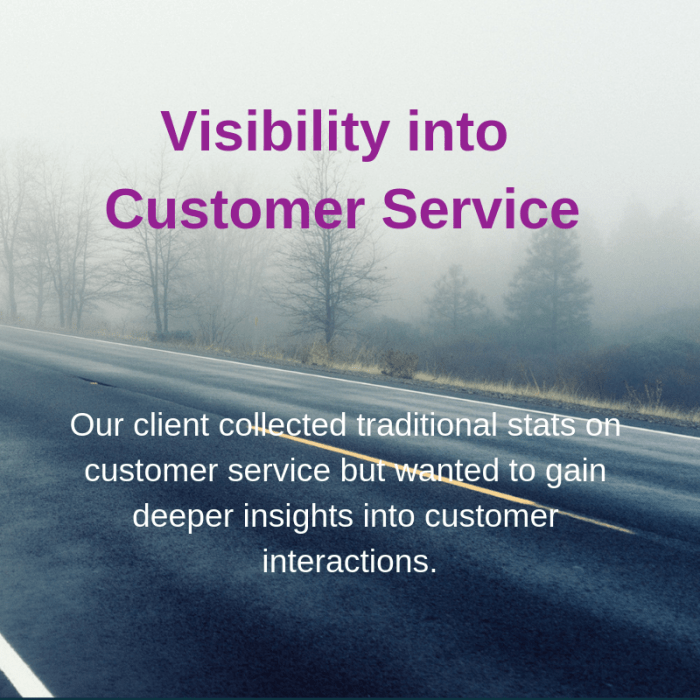 visibility into customer service