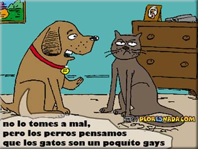 https://i0.wp.com/peoresnada.com/pictures/h/perro_vs_gato.jpg