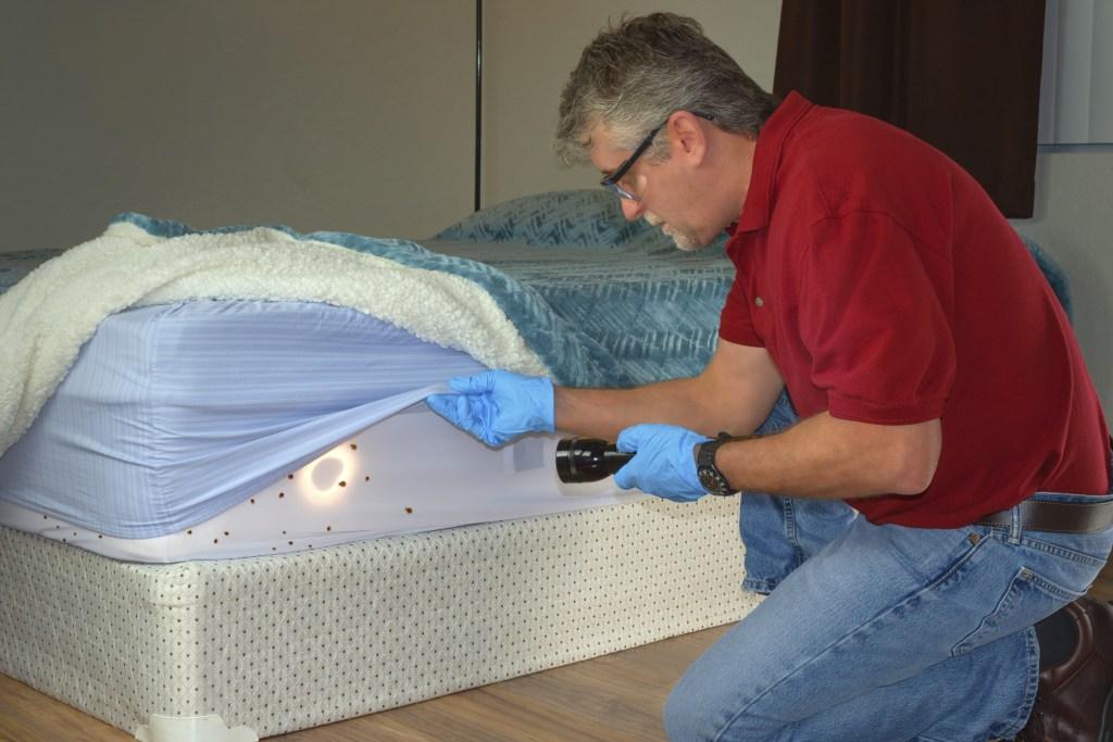 Technicien en inspection pour un diagnostic