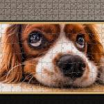 Pixel Puzzles Traditional Jigsaws: Dogs Windows Pixel Puzzles Traditional Jigsaws: Dogs_4