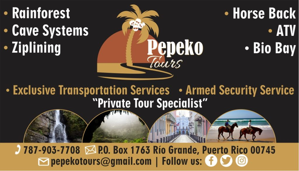 Pepeko Tours in Puerto Rico, tours guide in puerto rico, rainforest tours in puerto rico, bio bay tours in puerto rico, puerto rico bio bay tours