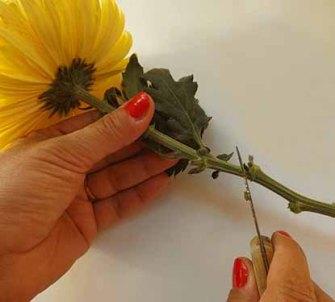 cortar la flor