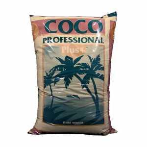 Tecniche avanzate di coltivazione cocco