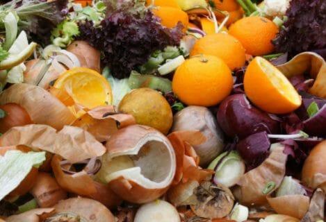 Concimare peperoncini piccanti organico naturale compostt