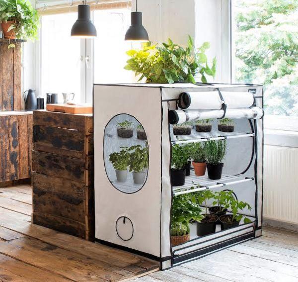 Grow Box Coltivazione Indoor (2)