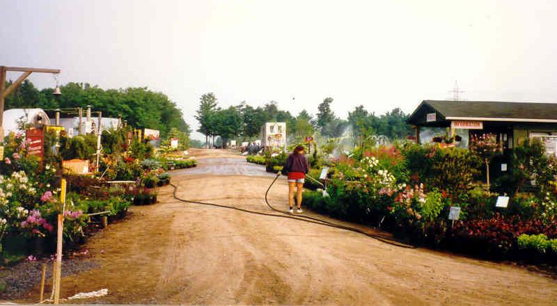 Ancien-centre-jardin-Pepiniere-Villeneuve-2