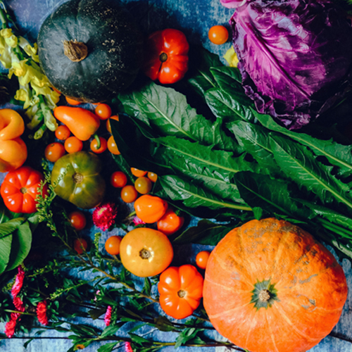 Catégories De Semences Légumes