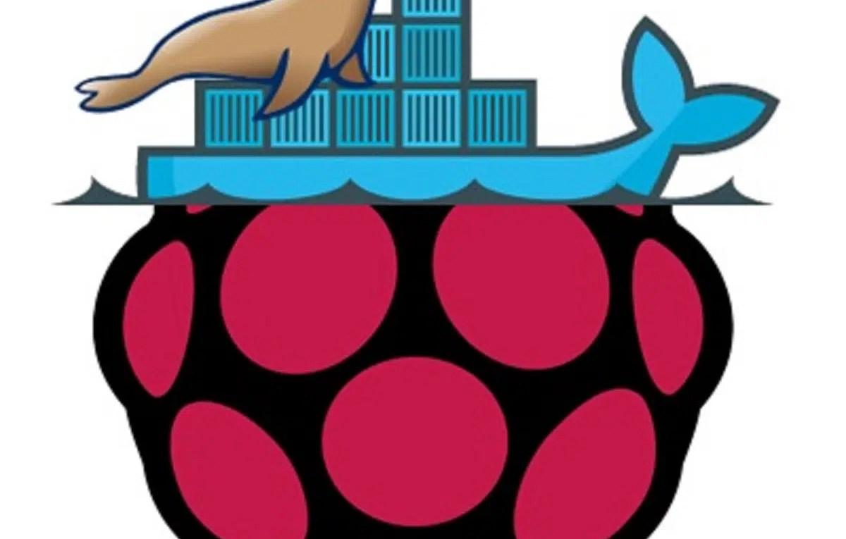 Raspberry PI Docker custom mariadb logo_2