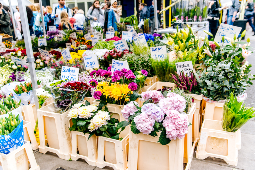 1020 - arrangement-beautiful-bloom-709824