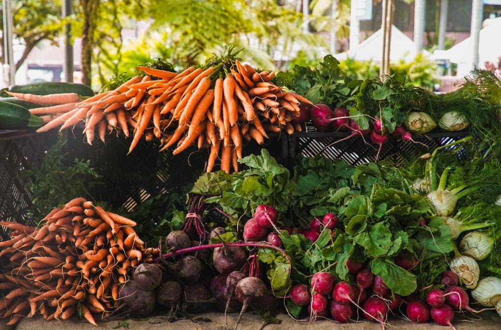 1020 - carrots-food-fresh-1656663