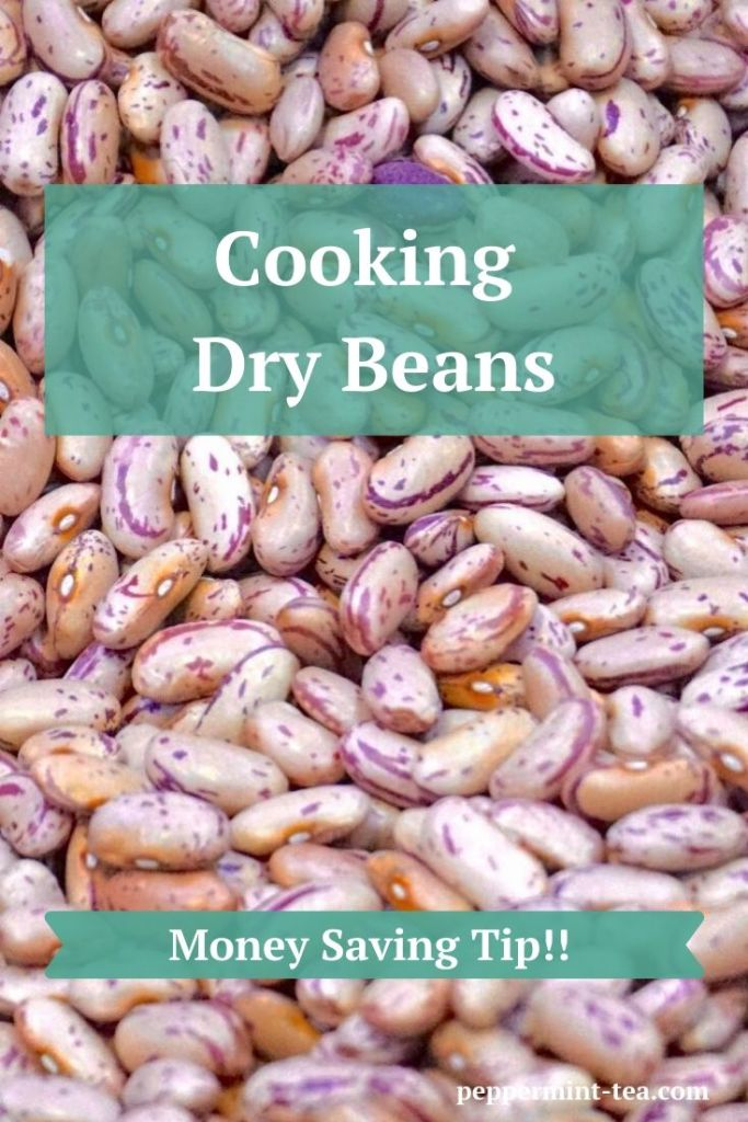 Photo of dry beans as an example of money-saving benefits of cooking dry beans.