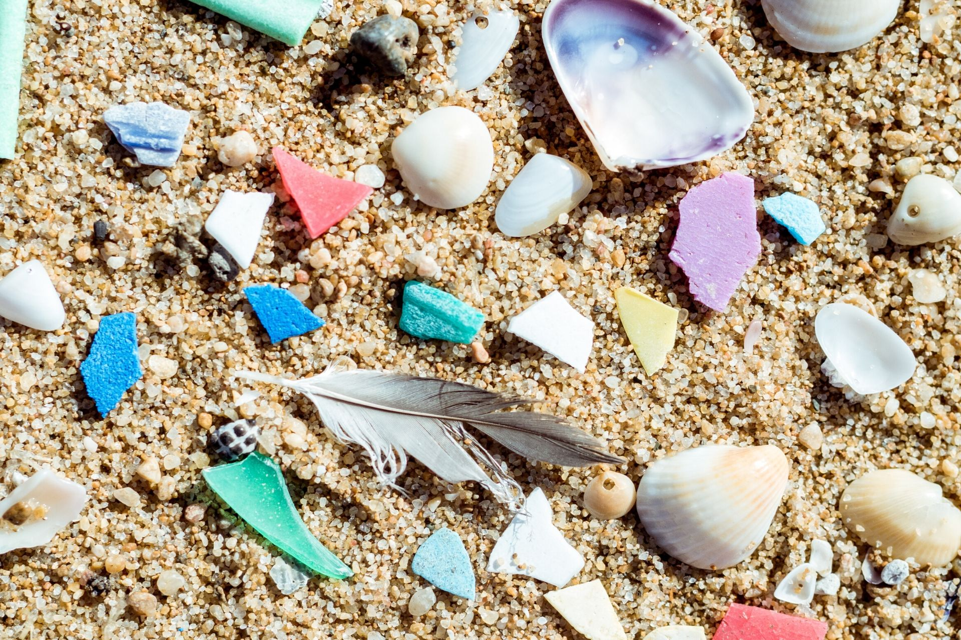 The problem with microplastics - peppermint magazine