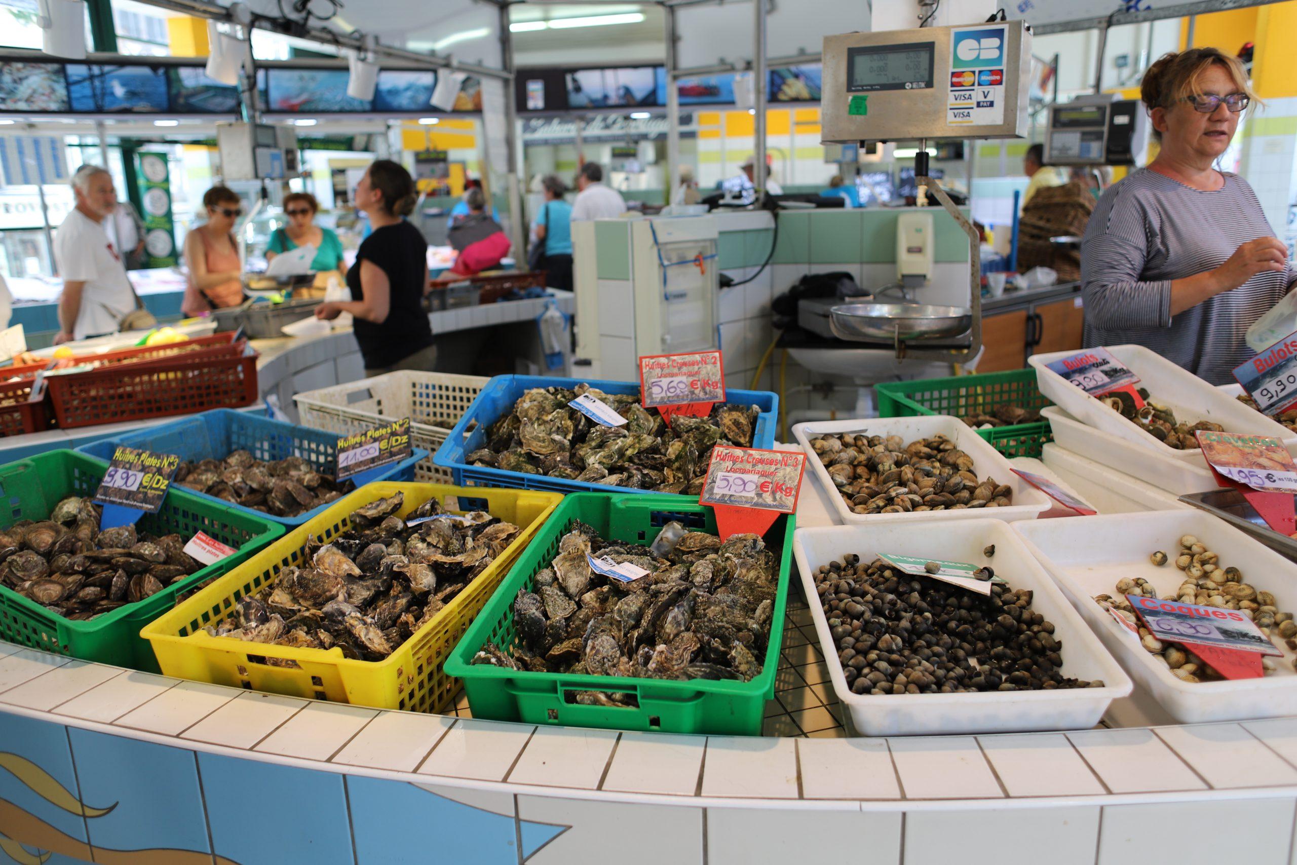 Fish Market in Auray