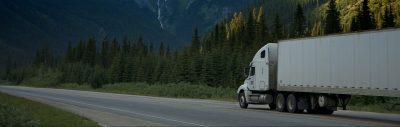 hire a virtual assistant for logistics