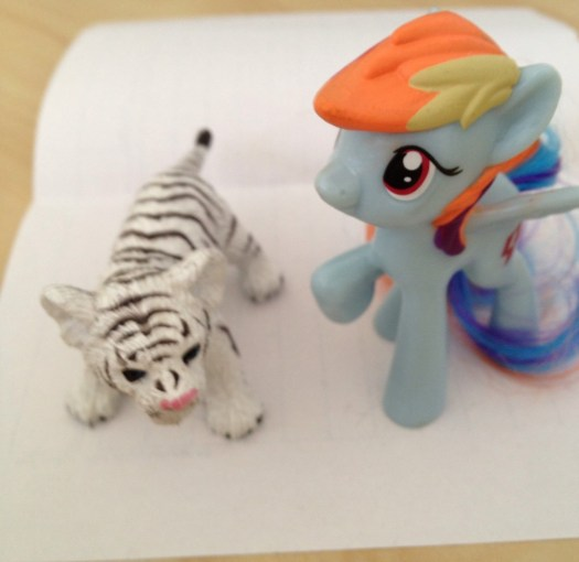 Tiger and Rainbow, Seeking Confirmation from Eachother