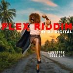 dj digital flex riddim