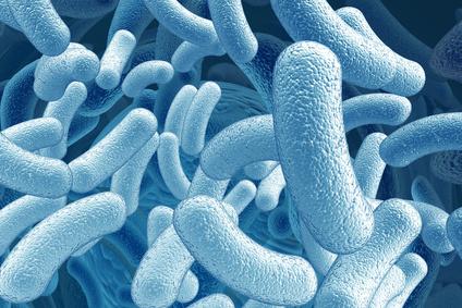 Les probiotiques : une tendance qui se confirme !