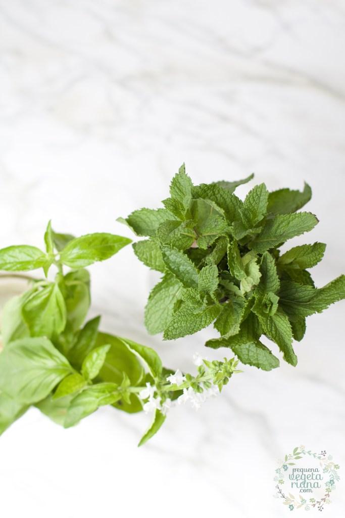 ervas frescas, menta, manjericao, como crescer ervas, como cozinhar com ervas frescas