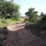 Camí ramader-2