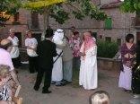 festa major 2008-9