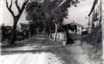 Perafita 1950