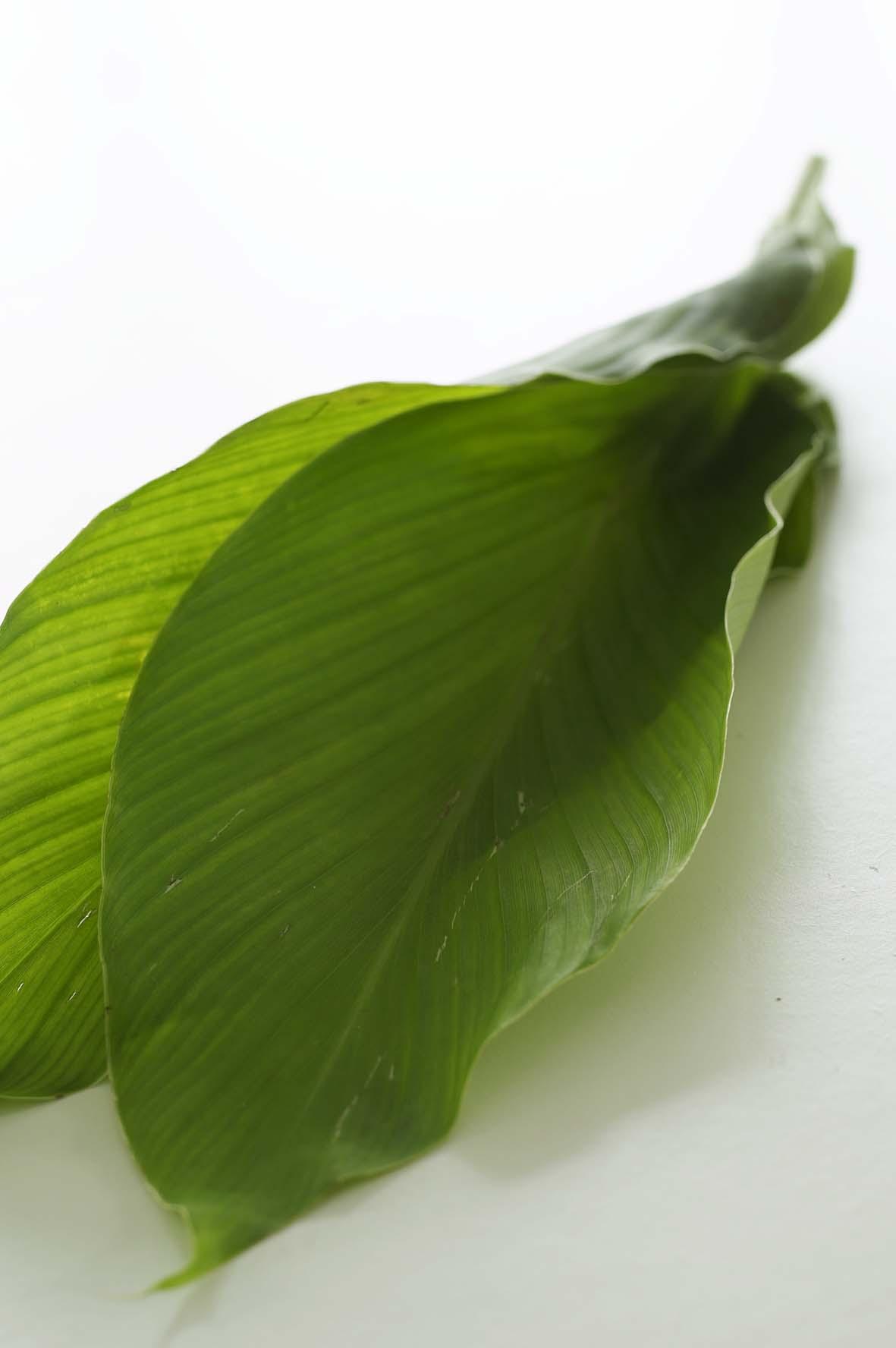Kunyit In English : kunyit, english, Turmeric, Leaves, (Daun, Kunyit), Peranakankitchen