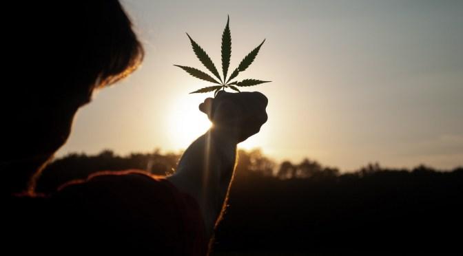 Ny serie: Mindfulness, cannabis og OCD