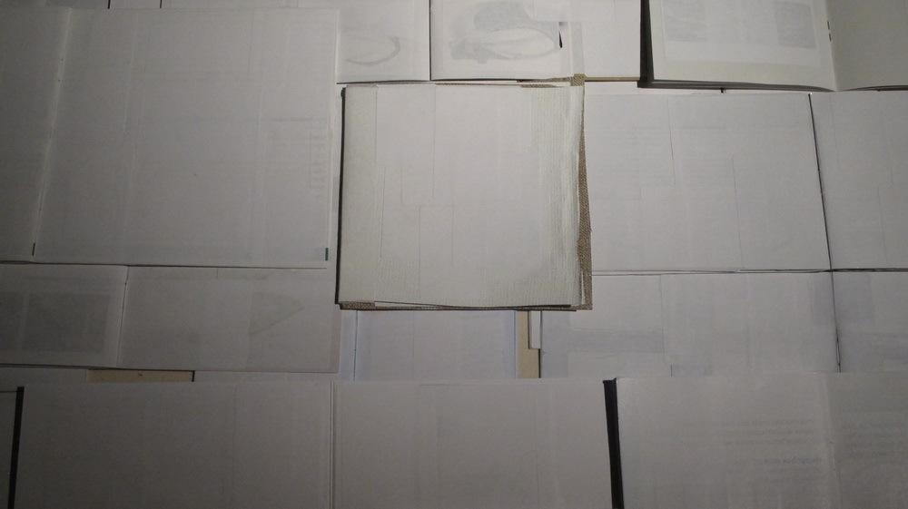 Bijele monografije
