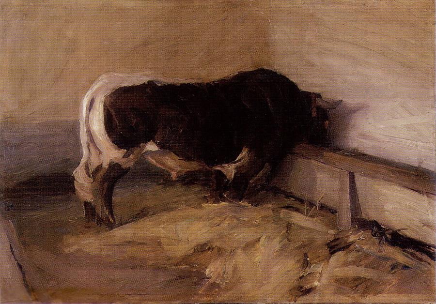 Pri druženju s bikom