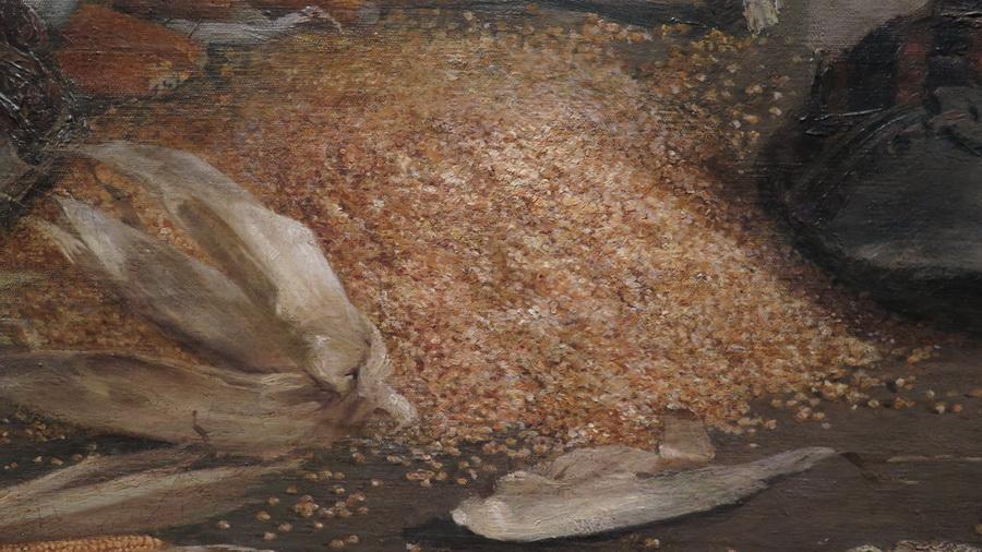 Slavonac runi kukuruz, 1891. (detalj)