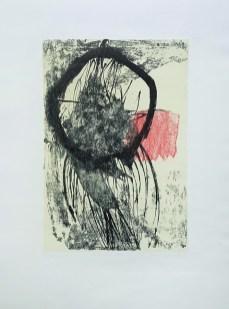 Dorotea Gašpar - litografija 2011/2012