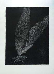 Tea Jurišić - litografija 2011/2012