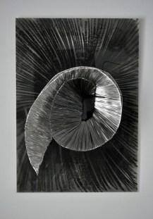 Crno bijela rozeta; čelik, aluminij, pastel, pleksiglas; 70x100x25cm