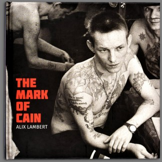 Bookcover of The Mark of Cain by Alix Lambert