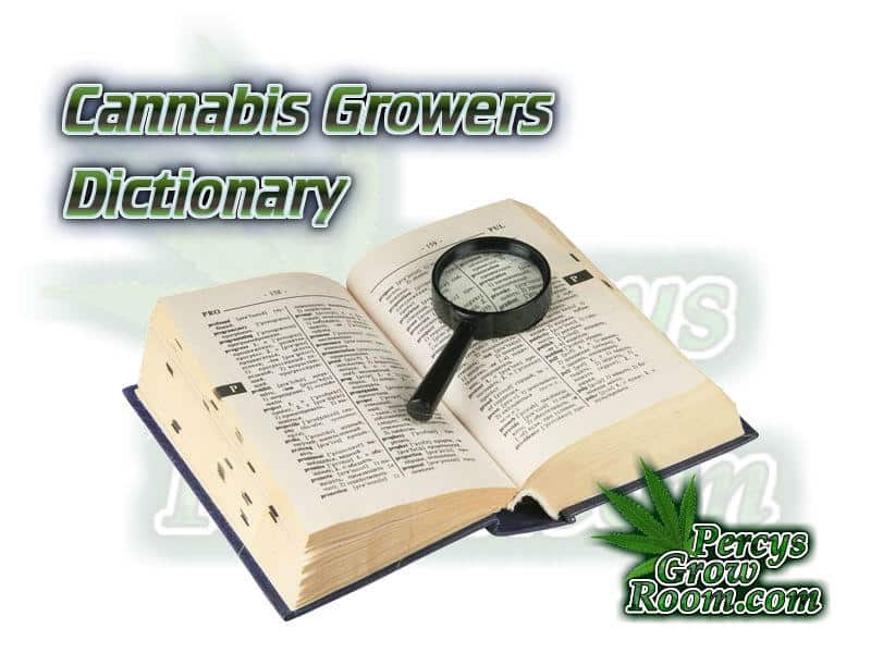 Cannabis Growers dictionary, What does Hps mean, what does CMH mean, whats does DWC stand for, Cannabis growers forum & community, How to grow cannabis, how to grow weed, a step by step guide to growing weed, cannabis growers forum, need help with sick plant, what's wrong with my cannabis plant, percy's Grow Room, the Grow Room, Cannabis Grow Guides, weed growing forum, weed growers community, how to grow weed in coco, when is my cannabis plant ready for harvest, how to feed my cannabis plant, beginners guide to growing weed, how to grow weed for personal use, cannabis plant deficiency, how to germinate cannabis seeds, where to buy cannabis seeds, best weed growers website, Learn to grow cannabis, is it easy to grow weed,, Cannabis Growers forum, weed growers forum, How to grow legal cannabis, a step by step guide to growing weed, cannabis growing guide, tips for marijuana growers, growing cannabis plants for the first time, marijuana growers forum, marijuana growing tips, cannabis plant problems, cannabis plant help, marijuana growing expert advice